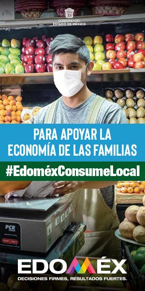 Consumo Local EDOMEX